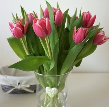 kwiaty żywe cięte
